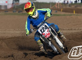 TLD Thursday Wallpapers – Sandstorm 2015