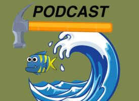 SX Podcast with Hammertime, Bigwave, and The Fish